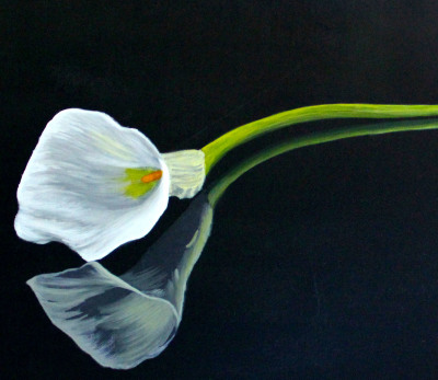 Calla lilly, painting, acrylic, reflection, elegant, photo-realistic,